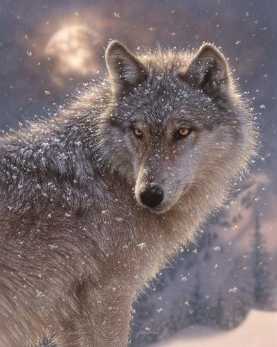 Lone Wolf art print by Collin Bogle for $40.00 CAD