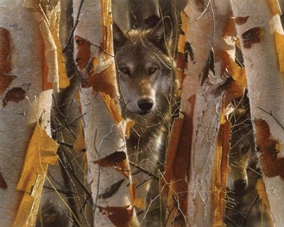 Wolves - The Guardian art print by Collin Bogle for $42.50 CAD
