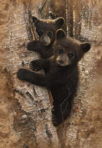 Curious Cubs art print by Collin Bogle for $43.75 CAD