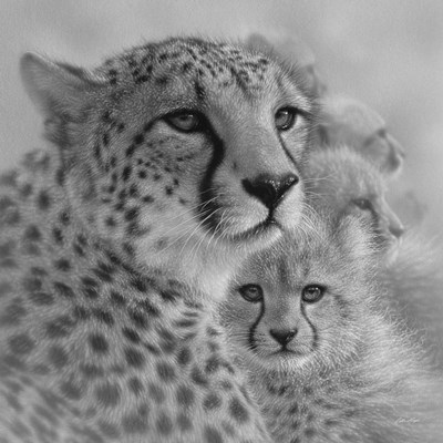 Cheetah Mother and Cubs - Mother's Love - Square - B&W art print by Collin Bogle for $48.75 CAD