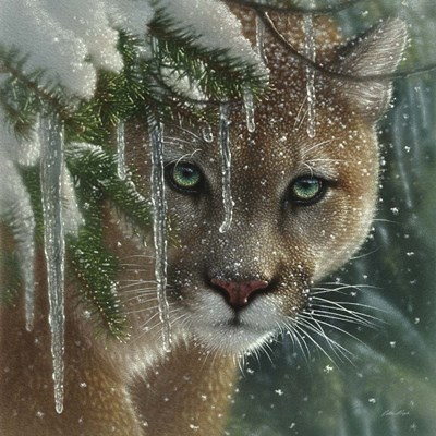 Cougar - Frozen art print by Collin Bogle for $48.75 CAD