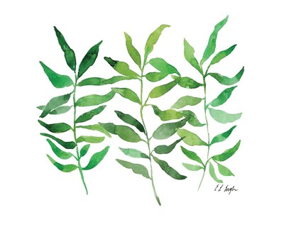 Three Green Branches art print by Elise Engh for $40.00 CAD