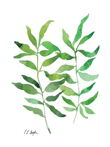 Two Green Branches art print by Elise Engh for $41.25 CAD
