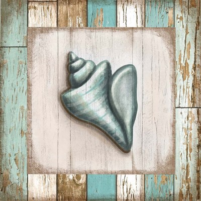 Turquoise Seashell art print by Elizabeth Tyndall for $63.75 CAD