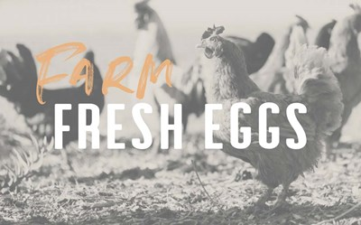 Farm Fresh Eggs art print by Linda Woods for $42.50 CAD