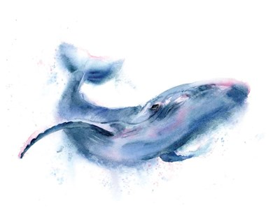 Whale art print by Olga Shefranov for $30.00 CAD
