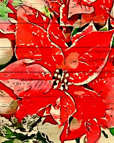 Poinsettia Red art print by Ramona Murdock for $40.00 CAD