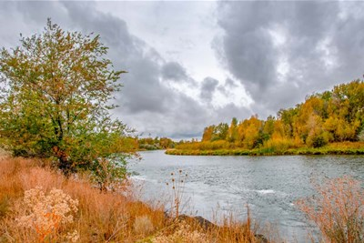 Snake River Autumn I art print by Ramona Murdock for $43.75 CAD