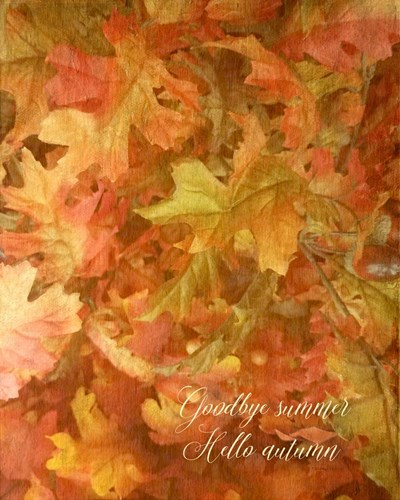 Goodbye Summer art print by Ramona Murdock for $40.00 CAD