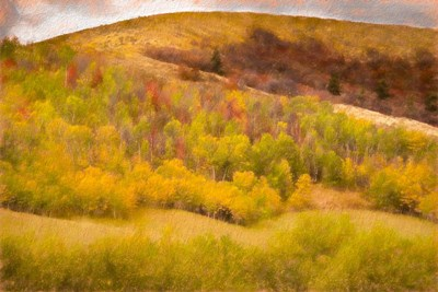 Autumn on the Hill art print by Ramona Murdock for $43.75 CAD