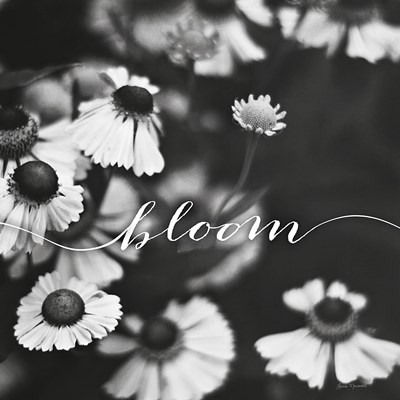 Bloom art print by Laura Marshall for $36.25 CAD