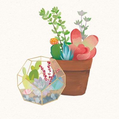 Succulent Garden III art print by Wild Apple Portfolio for $112.50 CAD