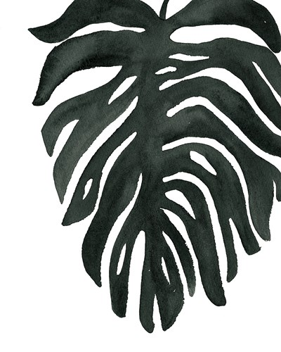 Tropical Palm II BW art print by Wild Apple Portfolio for $58.75 CAD