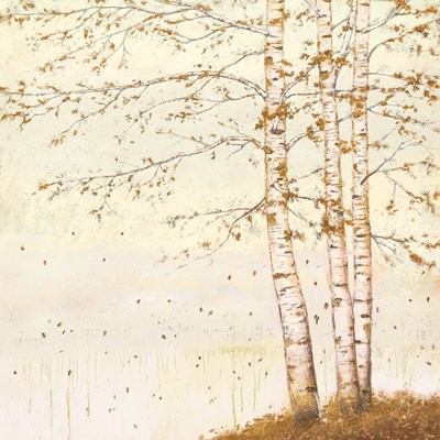 Golden Birch II Off White art print by James Wiens for $58.75 CAD