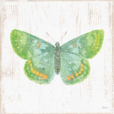 White Barn Butterflies II art print by Sue Schlabach for $36.25 CAD