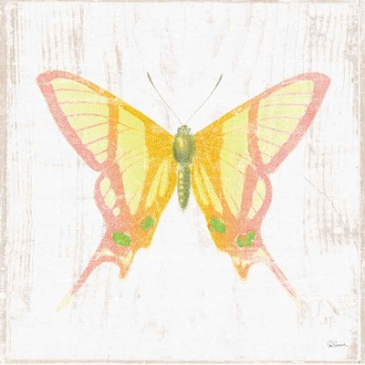 White Barn Butterflies IV art print by Sue Schlabach for $36.25 CAD