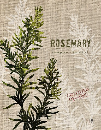 Organic Rosemary No Butterfly art print by STUDIO MOUSSEAU for $42.50 CAD