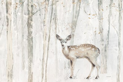 A Woodland Walk VII art print by Lisa Audit for $46.25 CAD