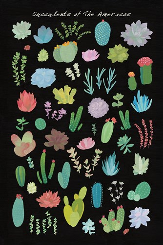 Succulent Chart I of the Americas art print by Wild Apple Portfolio for $46.25 CAD