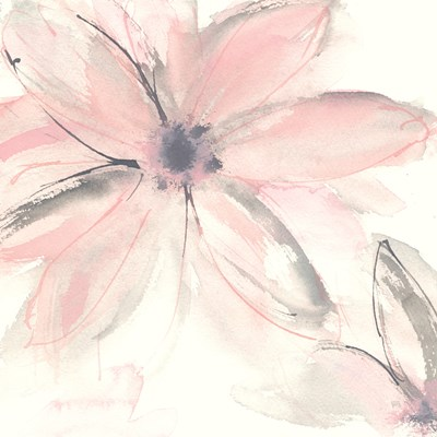 Blush Clematis II art print by Chris Paschke for $58.75 CAD
