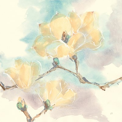 Magnolias in White I art print by Chris Paschke for $58.75 CAD