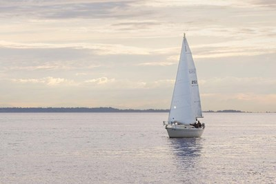 Sailboat in Semiahmoo Bay art print by Alan Majchrowicz for $46.25 CAD