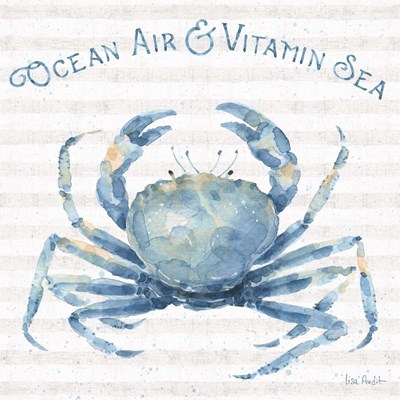 Nautical Life X art print by Lisa Audit for $67.50 CAD
