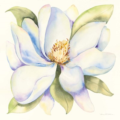 Magnolia art print by Kathleen Parr McKenna for $58.75 CAD