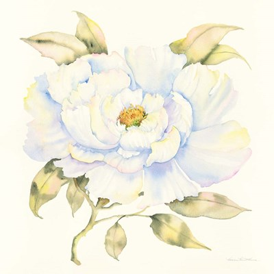 Peony art print by Kathleen Parr McKenna for $58.75 CAD