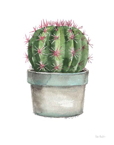 Mixed Greens Succulent II art print by Lisa Audit for $42.50 CAD