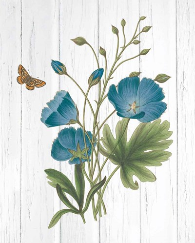 Botanical Bouquet on Wood III art print by Wild Apple Portfolio for $58.75 CAD