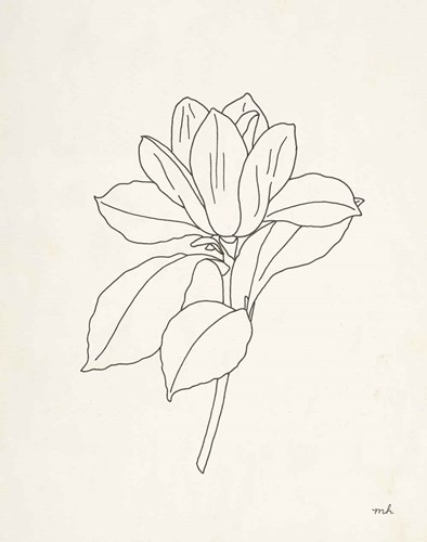 Magnolia Line Drawing art print by Moira Hershey for $58.75 CAD