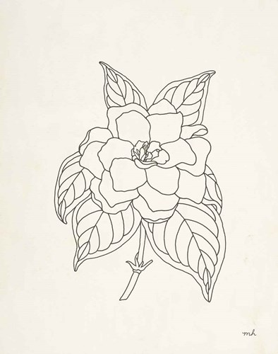 Gardenia Line Drawing art print by Moira Hershey for $58.75 CAD