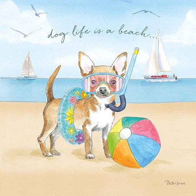 Summer Paws II art print by Beth Grove for $67.50 CAD