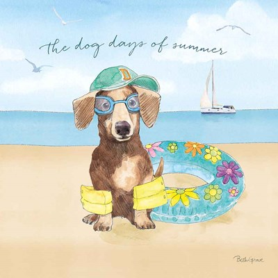 Summer Paws III art print by Beth Grove for $67.50 CAD