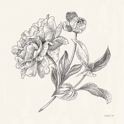 Flower Sketches I art print by Danhui Nai for $58.75 CAD