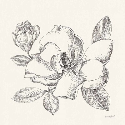 Flower Sketches II art print by Danhui Nai for $58.75 CAD