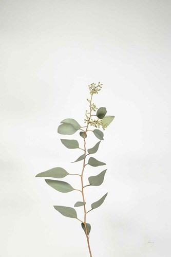 Simple Stems II art print by Felicity Bradley for $56.25 CAD
