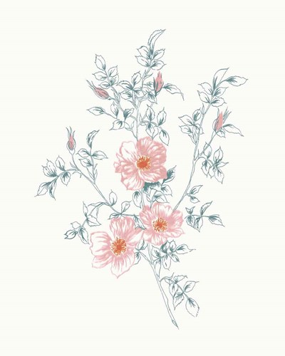 Flowers on White II Contemporary Bright art print by Wild Apple Portfolio for $58.75 CAD