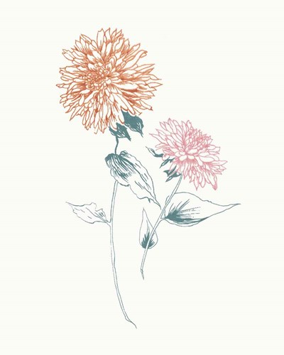 Flowers on White IV Contemporary Bright art print by Wild Apple Portfolio for $58.75 CAD