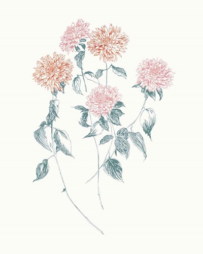 Flowers on White VI Contemporary Bright art print by Wild Apple Portfolio for $58.75 CAD