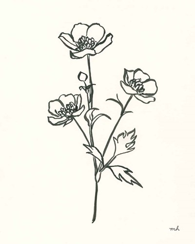 Buttercup art print by Moira Hershey for $58.75 CAD