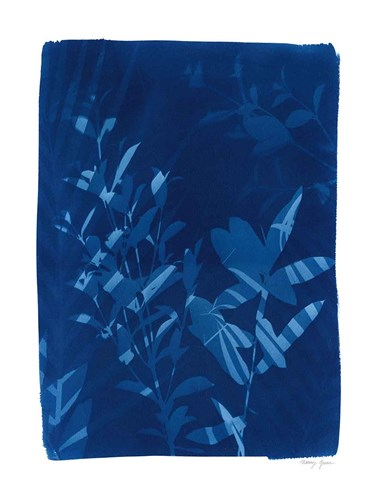Cyanotype Tropical VI art print by Nancy Green for $42.50 CAD