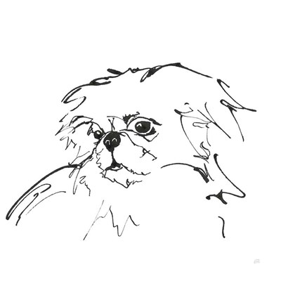 Line Dog Pekingese art print by Chris Paschke for $58.75 CAD