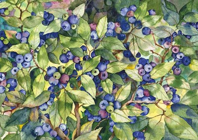 Blueberries art print by Kathleen Parr McKenna for $47.50 CAD