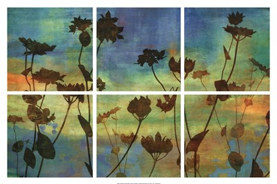 Wild Flowers I art print by Tania Bello for $78.75 CAD