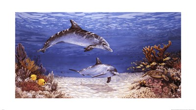 Dolphin World art print by James Harris for $37.50 CAD